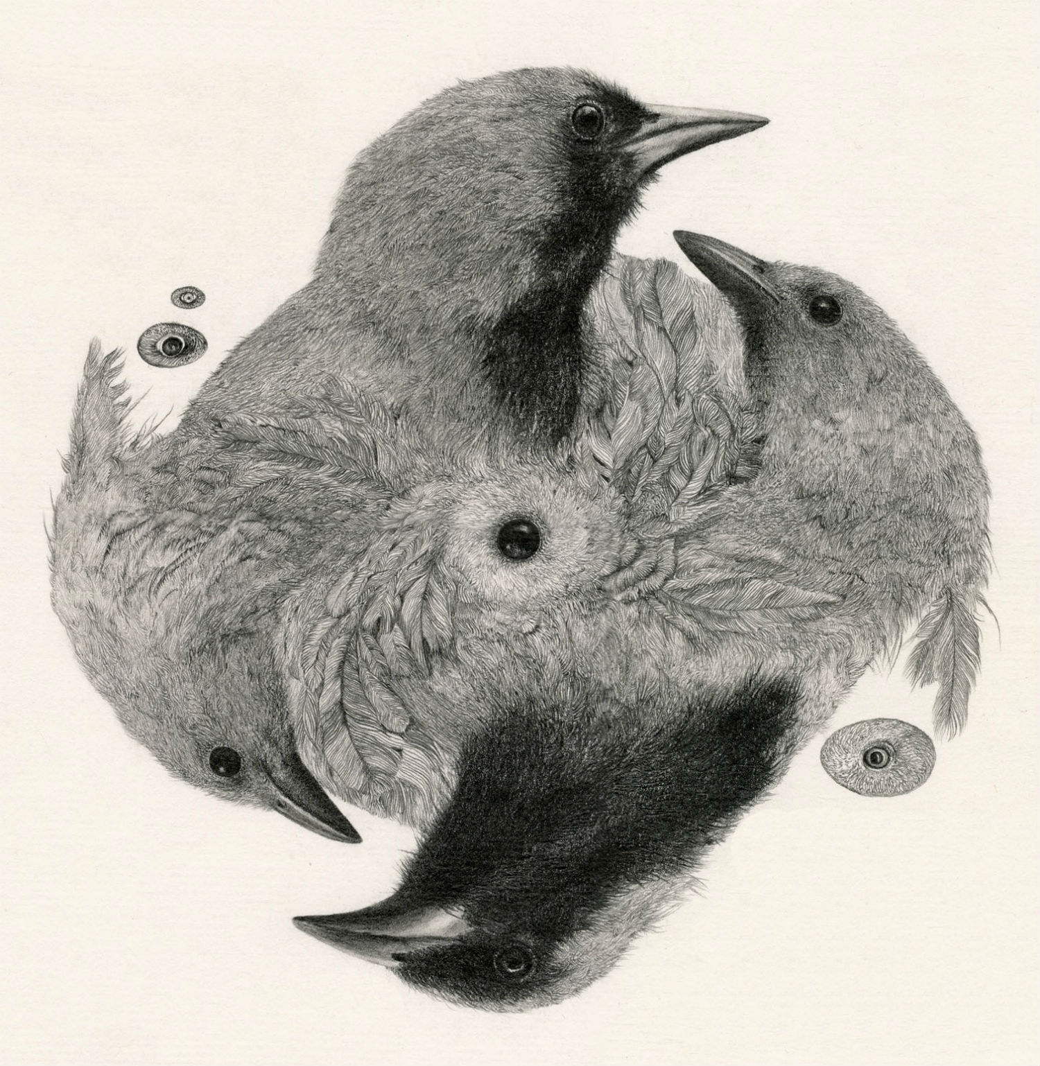 Alejandro García Restrepo illustration black white pencil