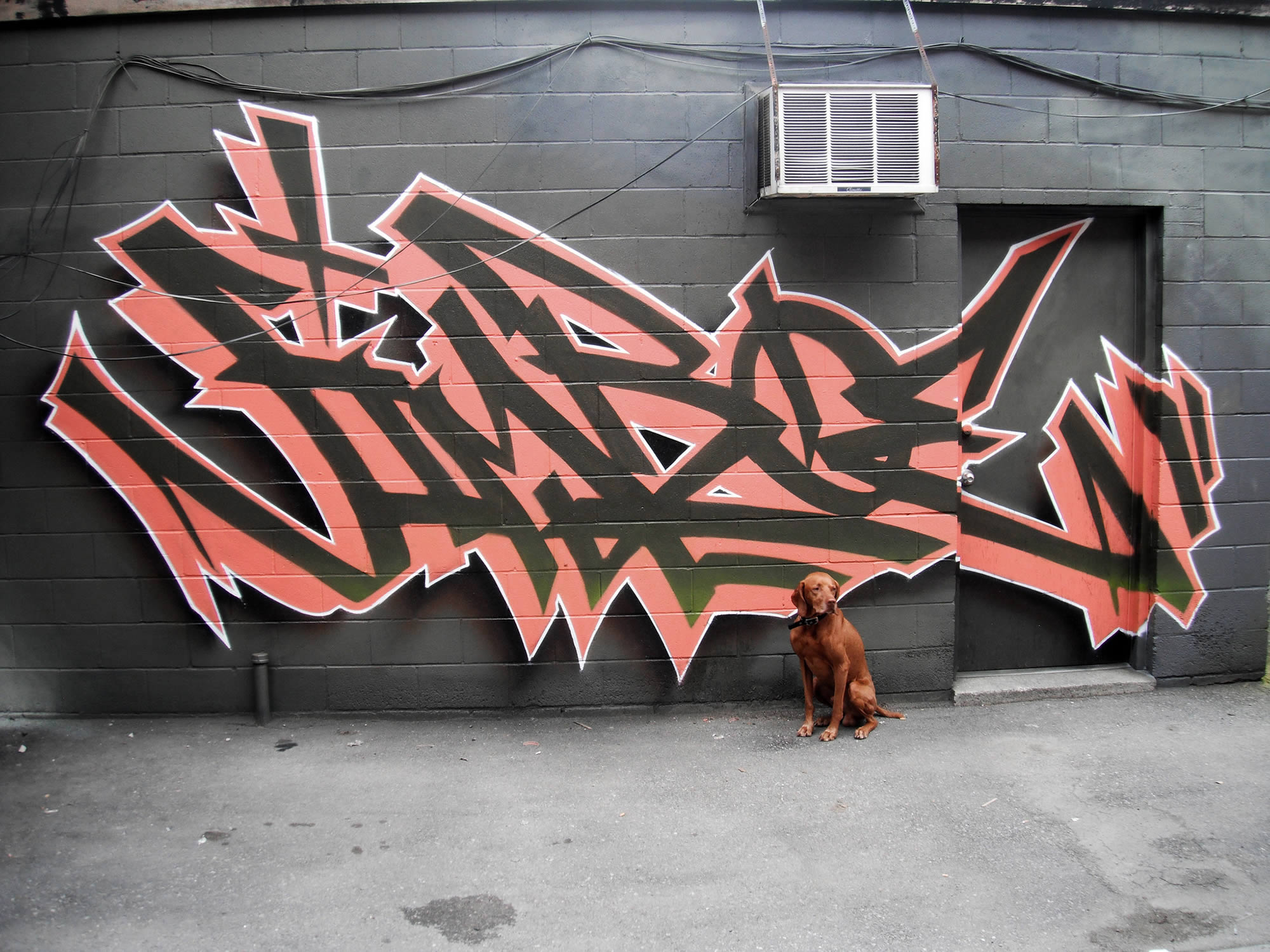 salmon and brown lettering graffiti by bacon
