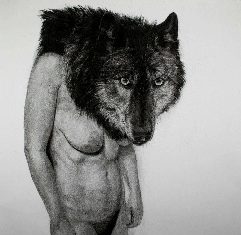 kelly blevin black white illustration wolf