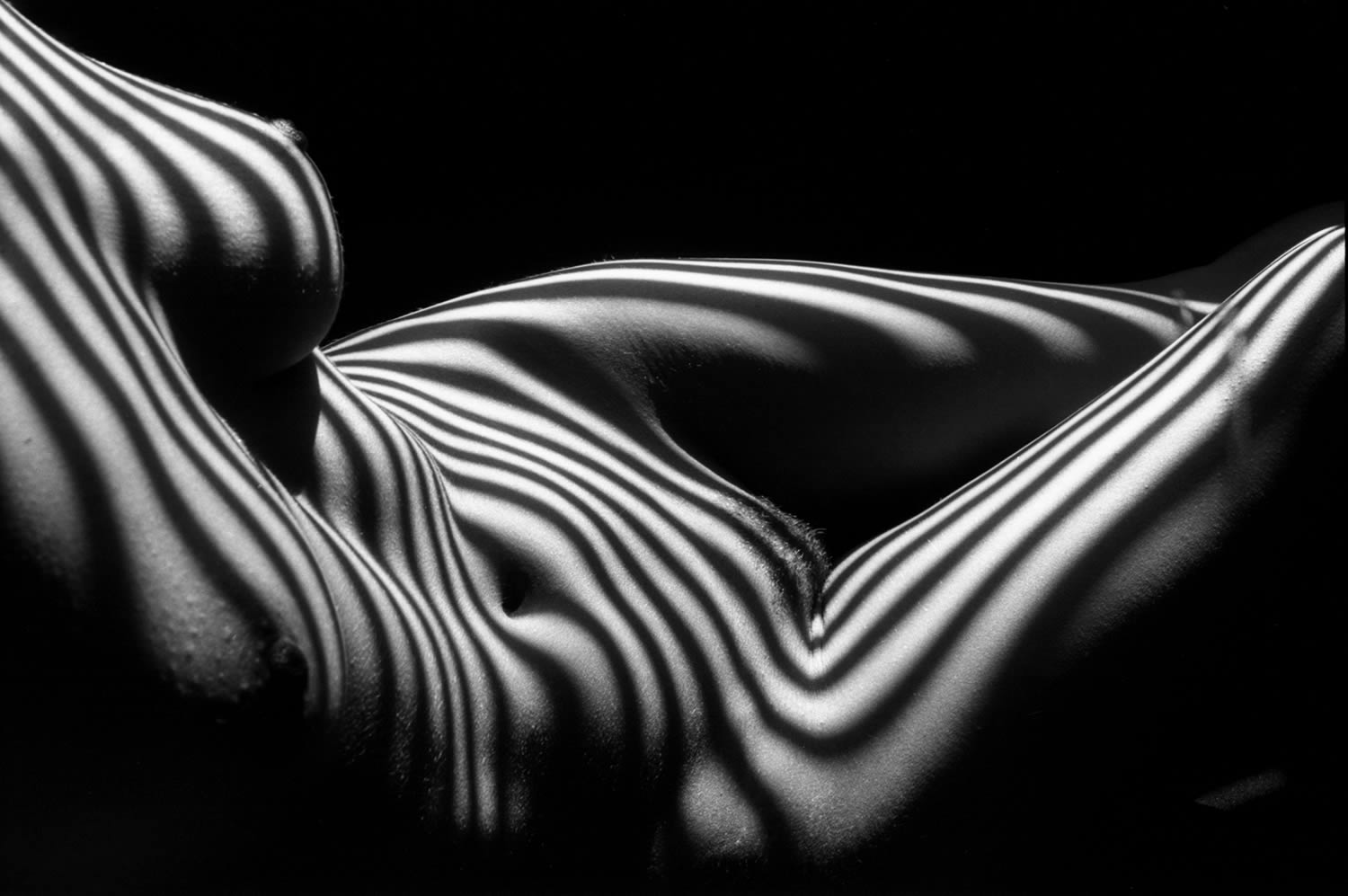 body at side, zebra striped nude, photography by lucien clergue