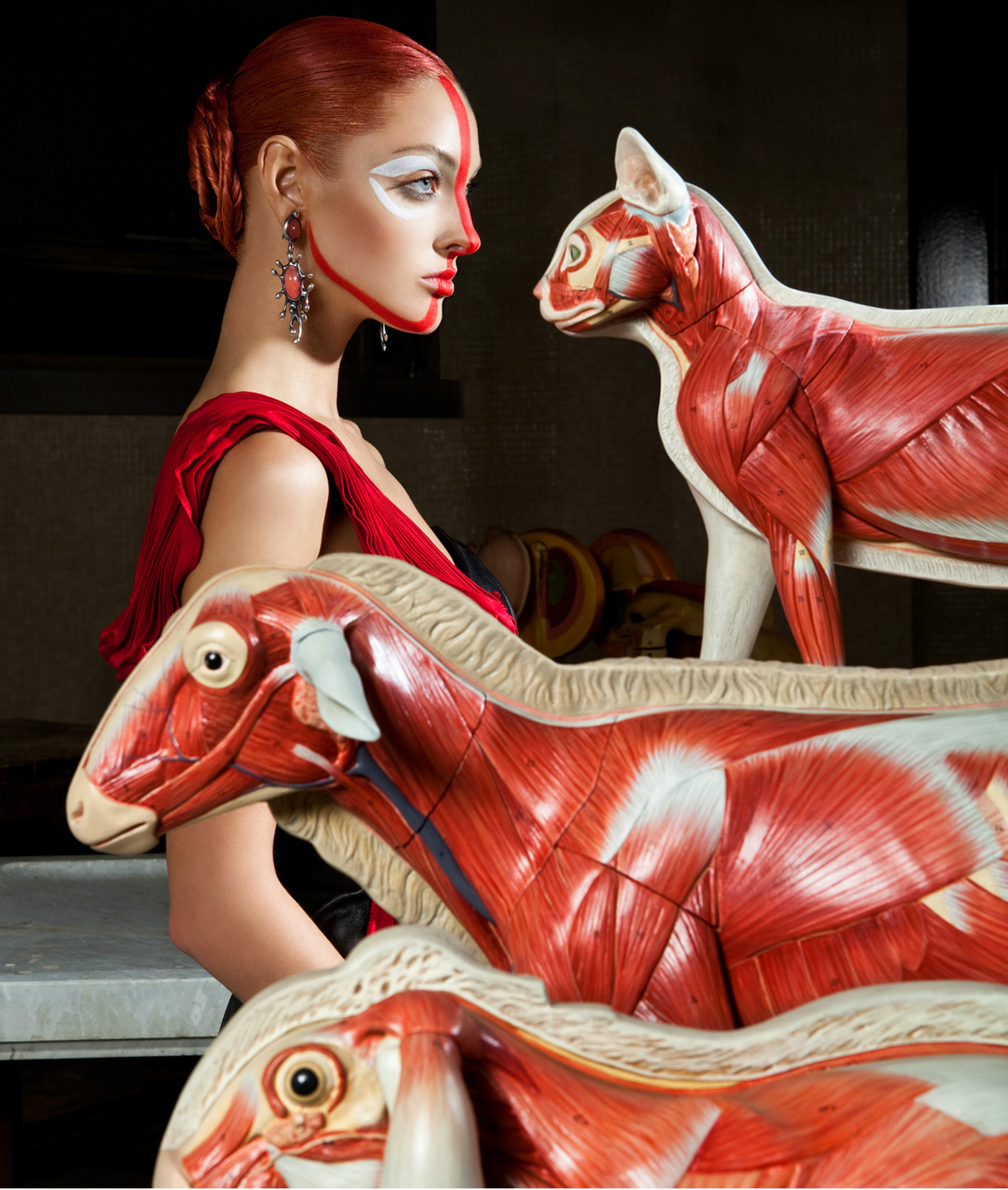 Lucia Giacani fashion photography anatomy animals model colour