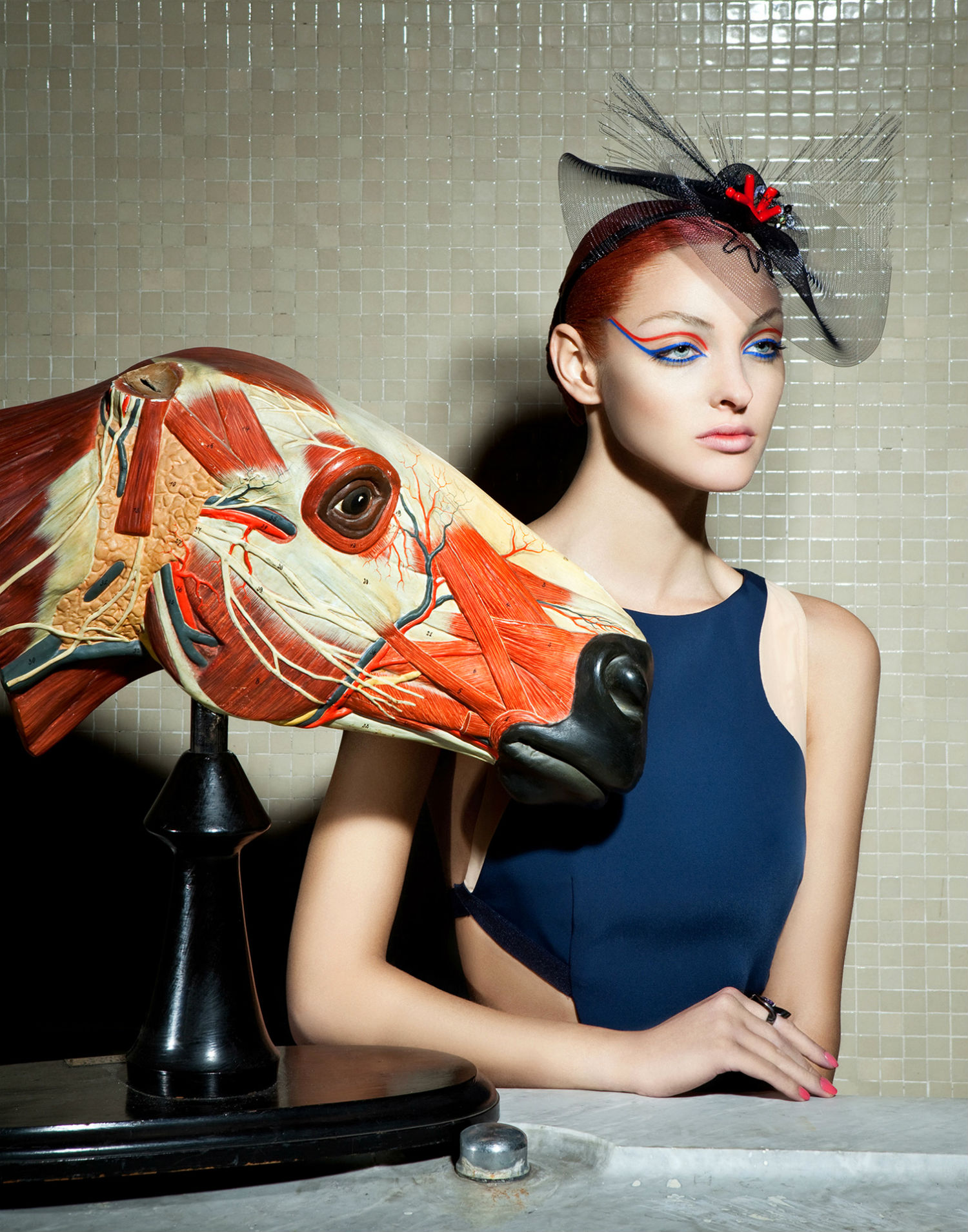 Lucia Giacani fashion photography anatomy animals model colour horse