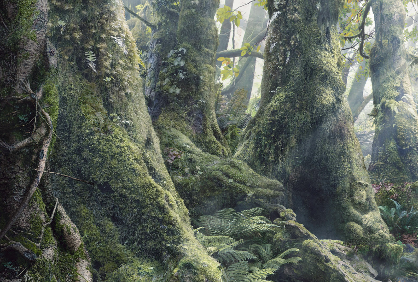 Optical Illusions Find The Hidden Animals In The Rainforest Scene360