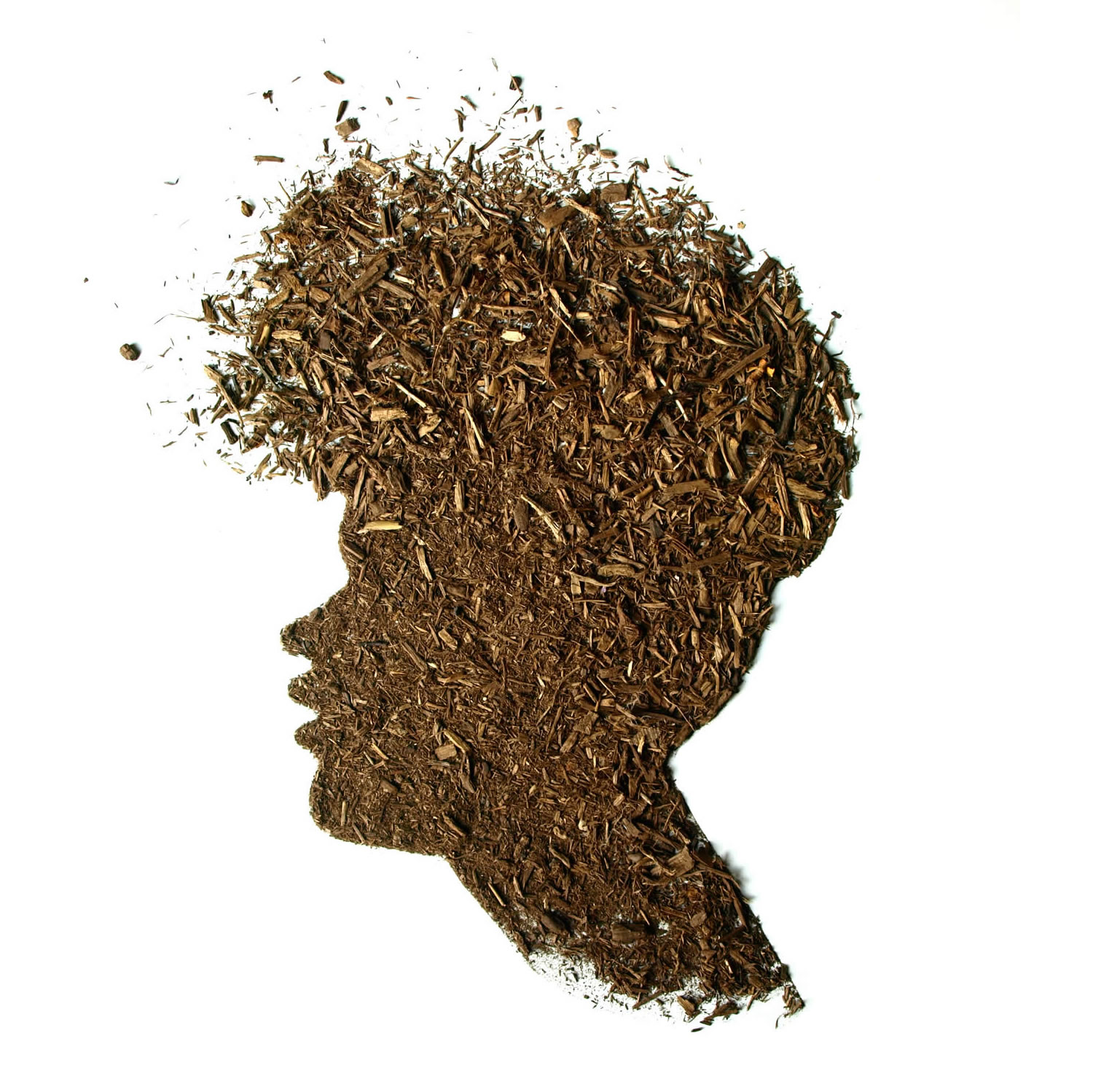 portrait made with soil by sarah rosado