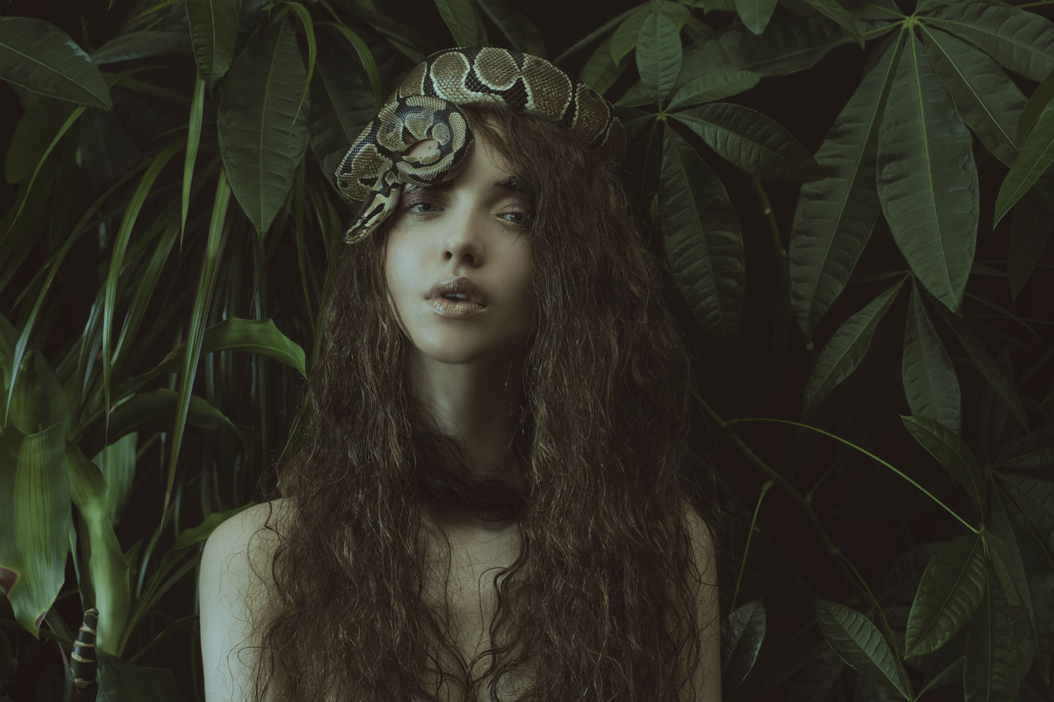 marta bevacqua photography surreal fashion snake jungle eve