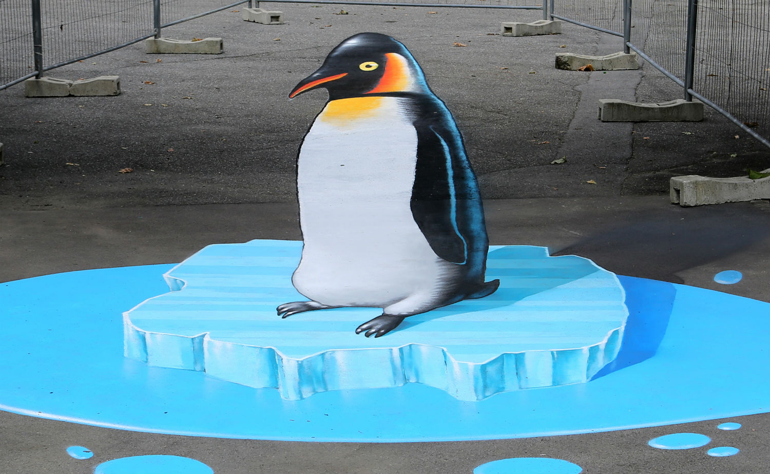 nevercrew street art graffiti penguin anamorphic