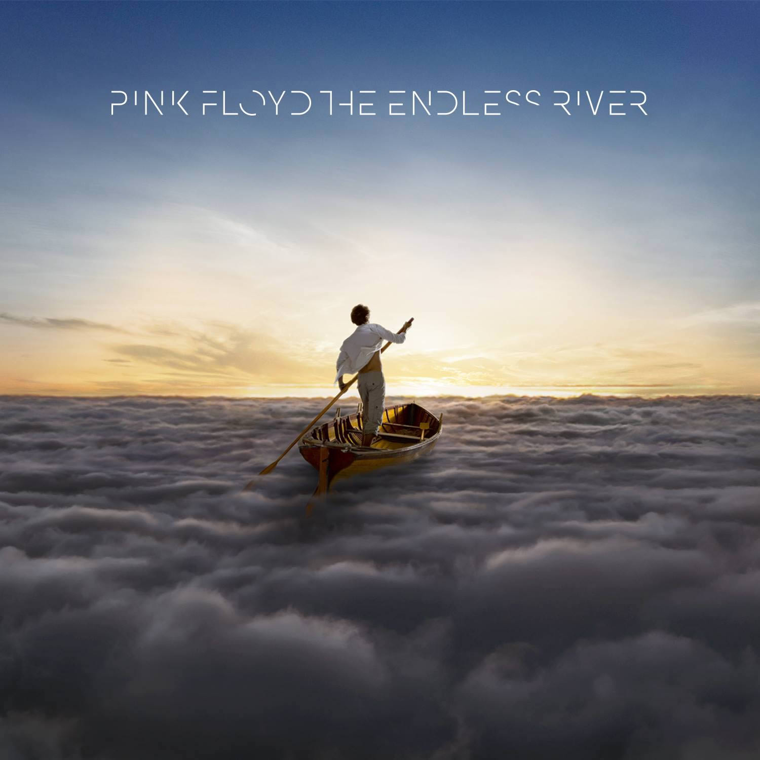 pink floyd's endless river album cover