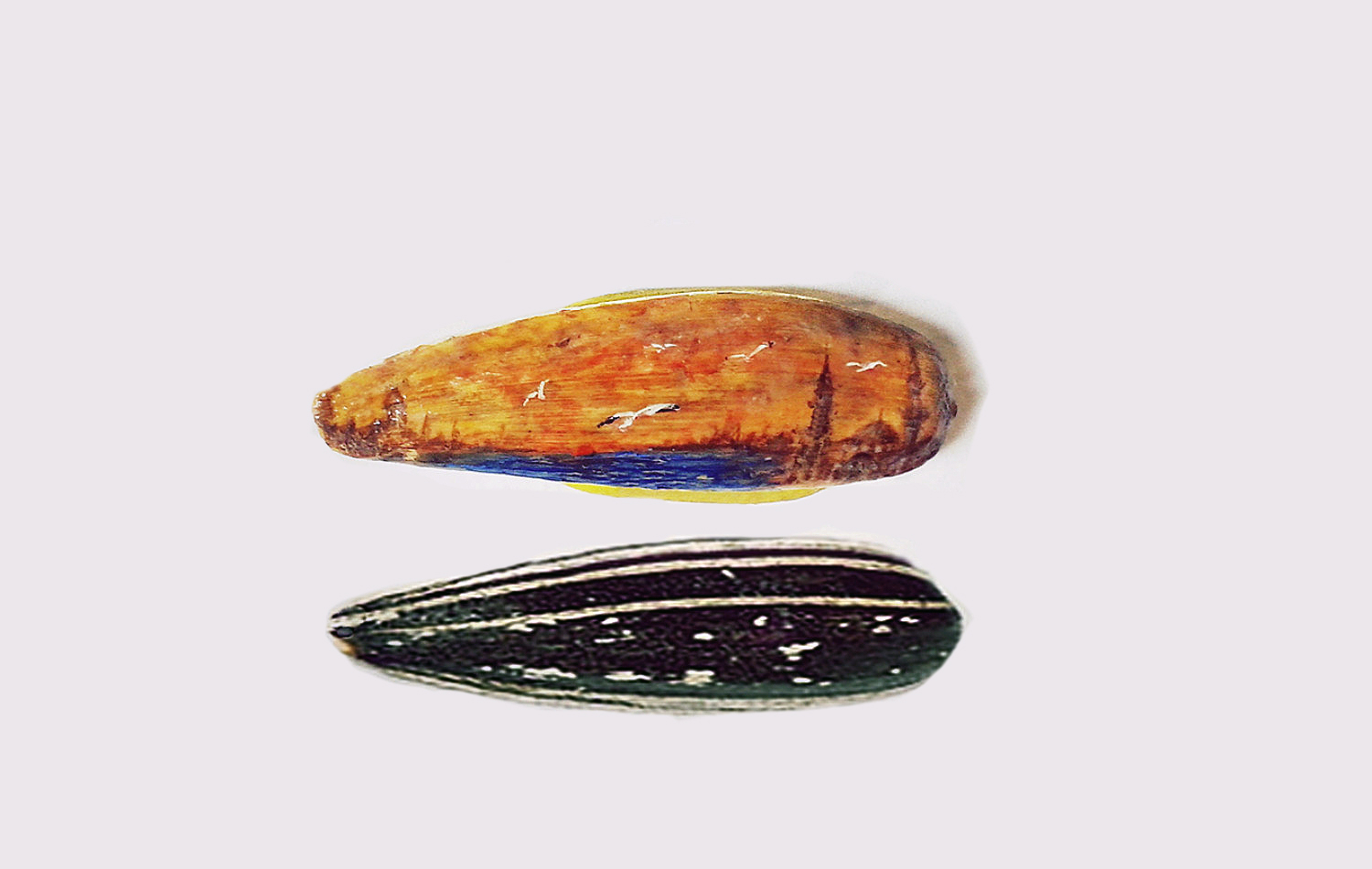 mesut kul painting miniature shell nut
