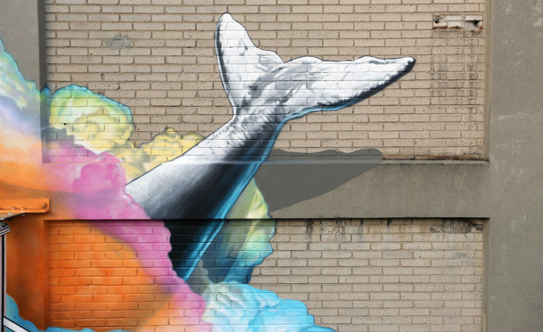 never crew street art whale marine life mural colour