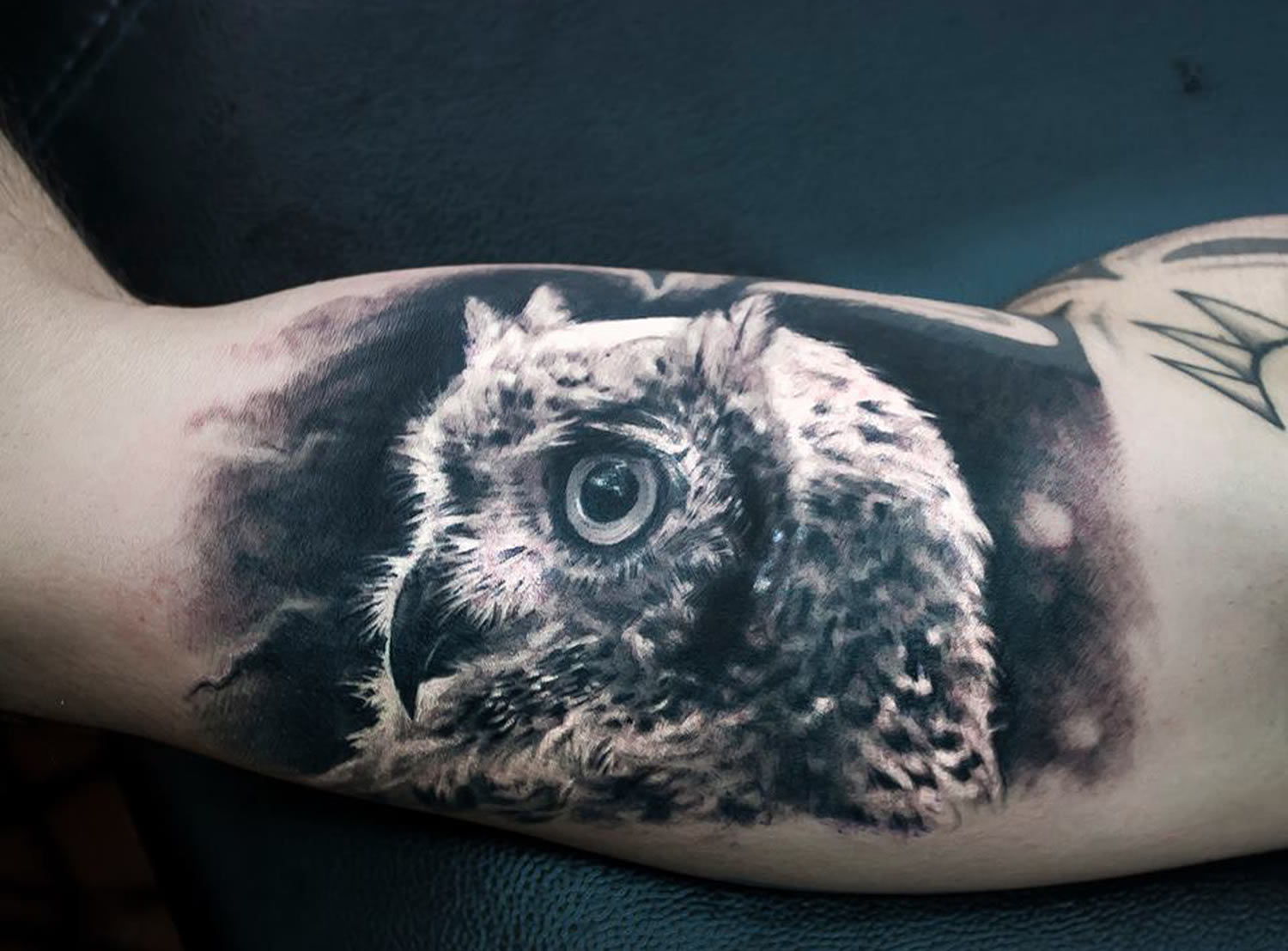 owl profile tattoo  by paolo murtas
