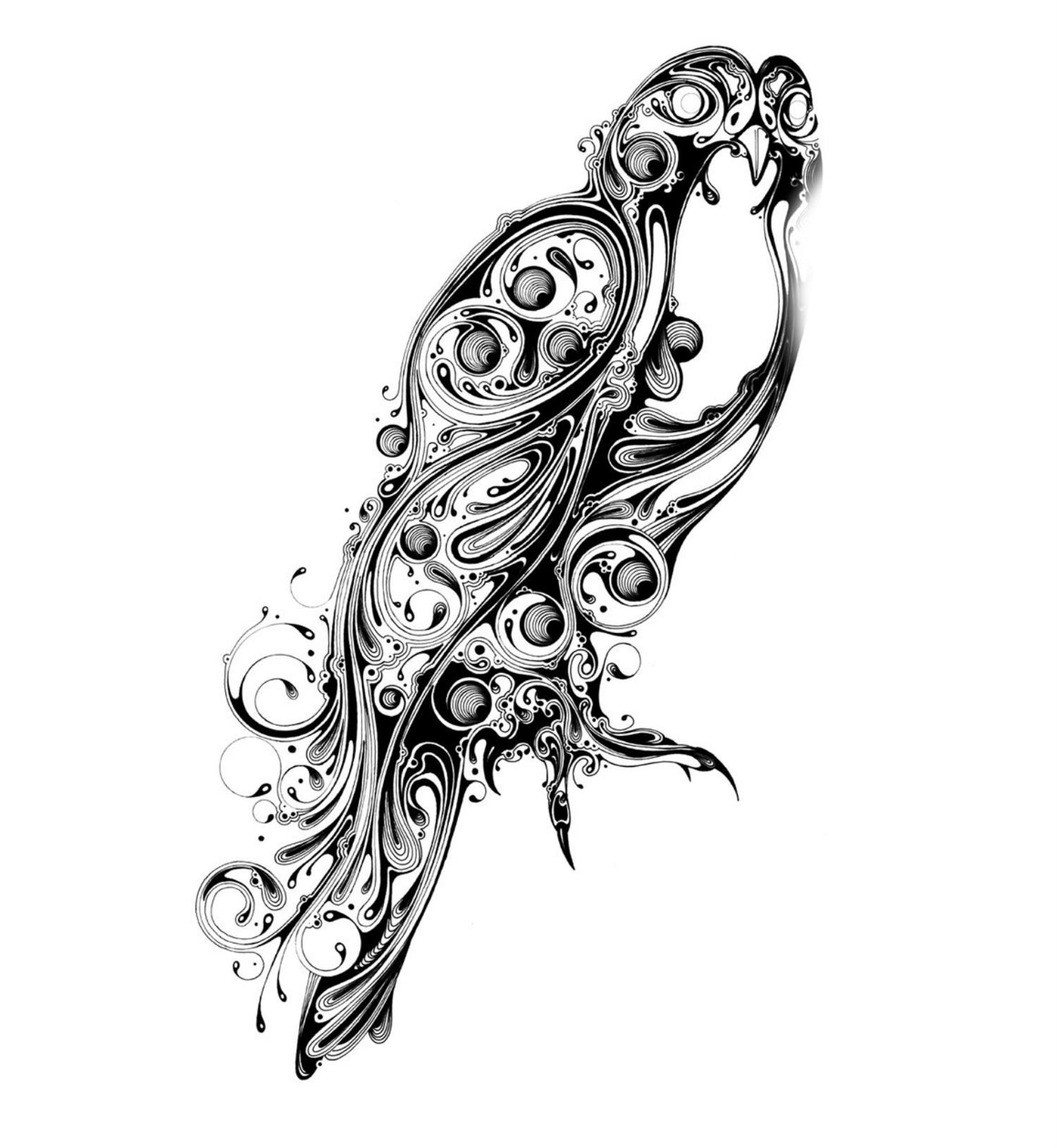 si scott illustration black and white hawk