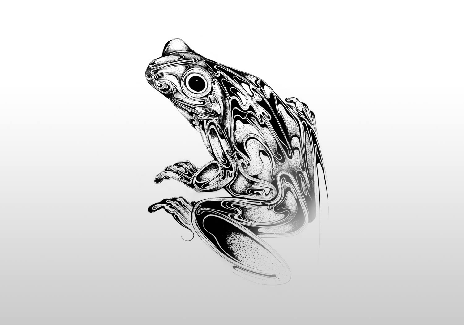 full drawing of frog in black