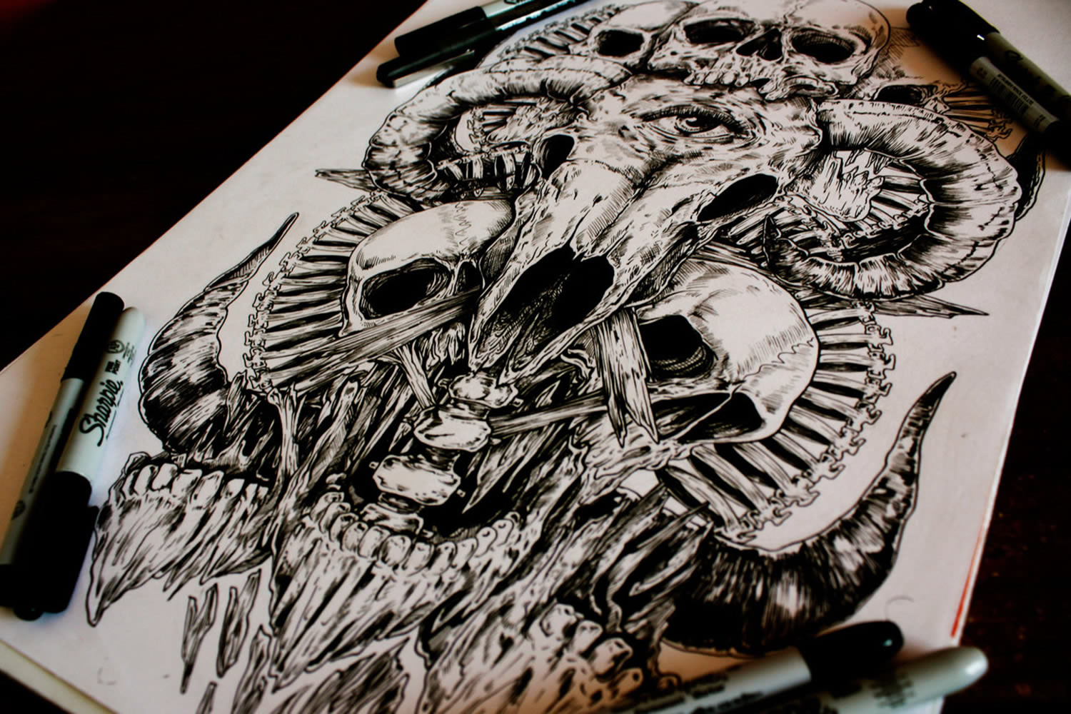 animal skull and human skull drawing by e.g. the freak
