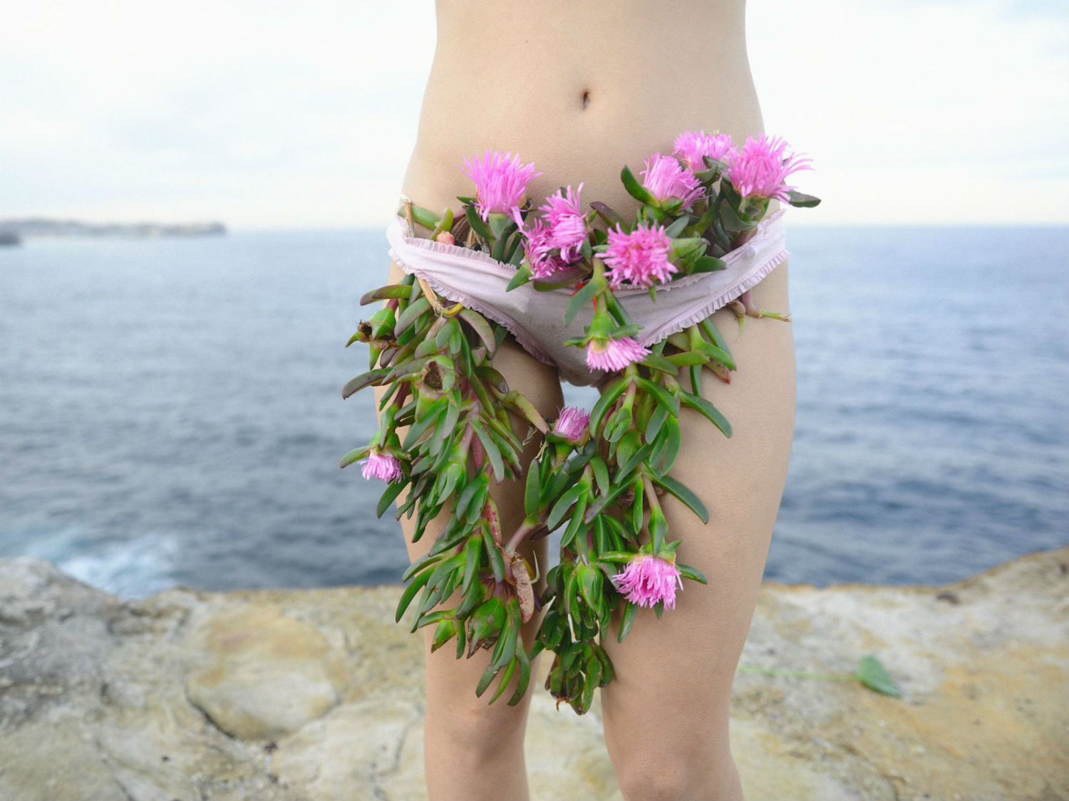 prue stent photography pink