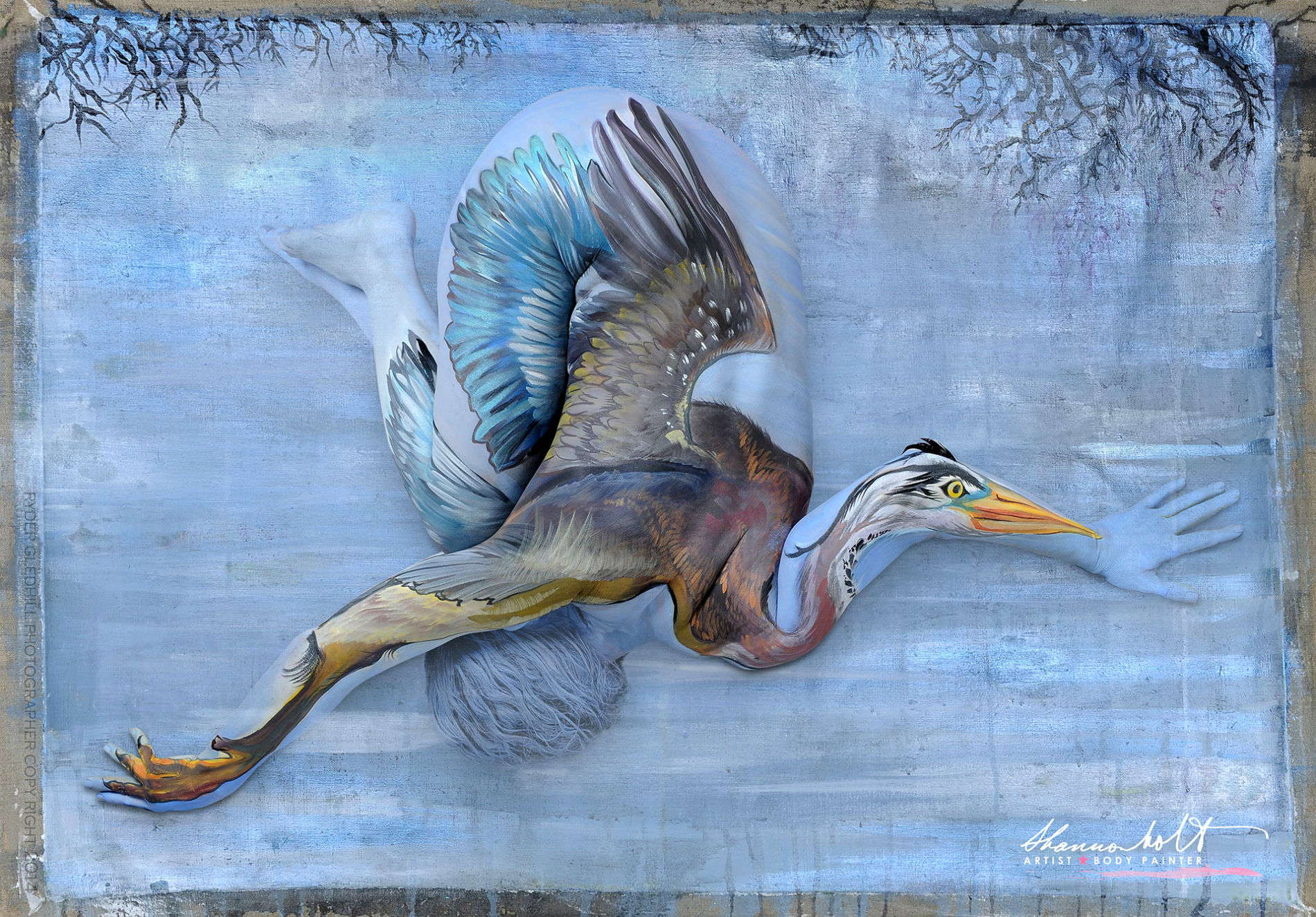 shannon holt body paint animal florida heron