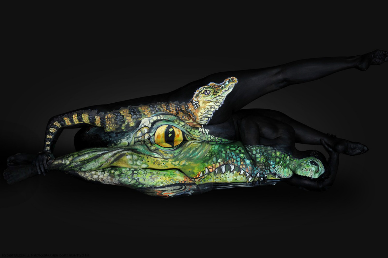 shannon holt body paint animal florida