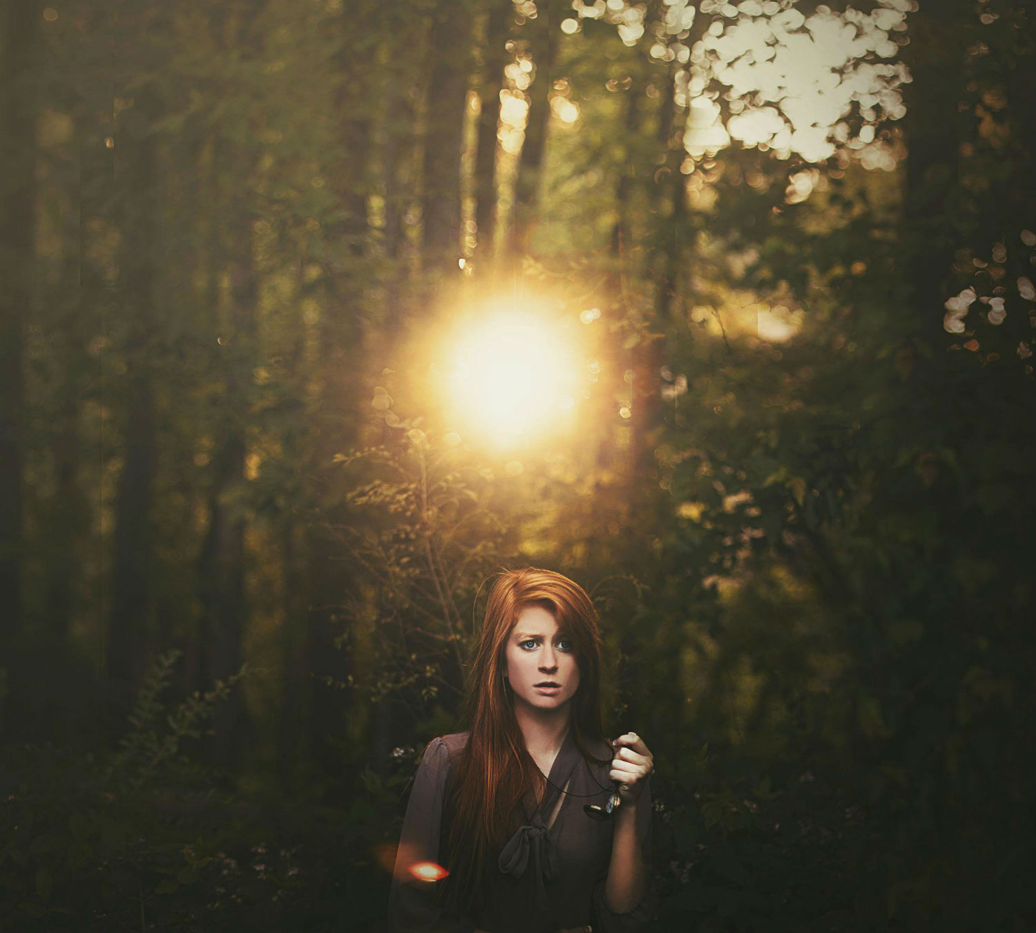 shelby robinson photography surreal colour magic sunlight forest