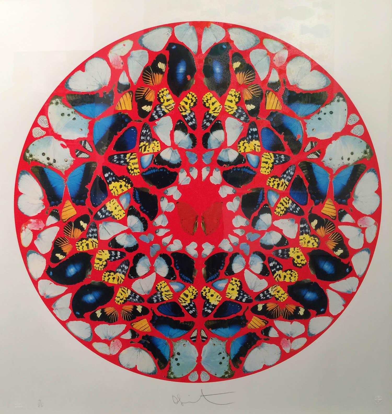 circle pattern art by damien hirst