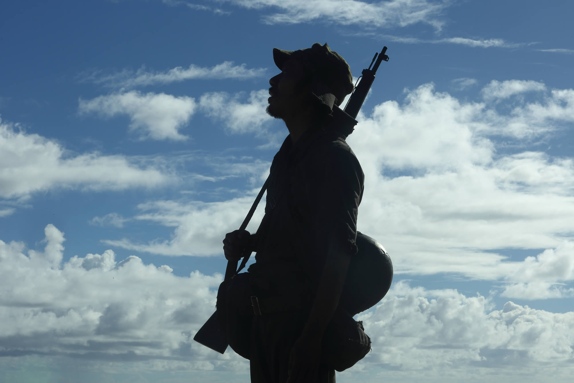 "silhouette of soldier against cloud backdrop, War is hell in ""Fires on the Plain."""