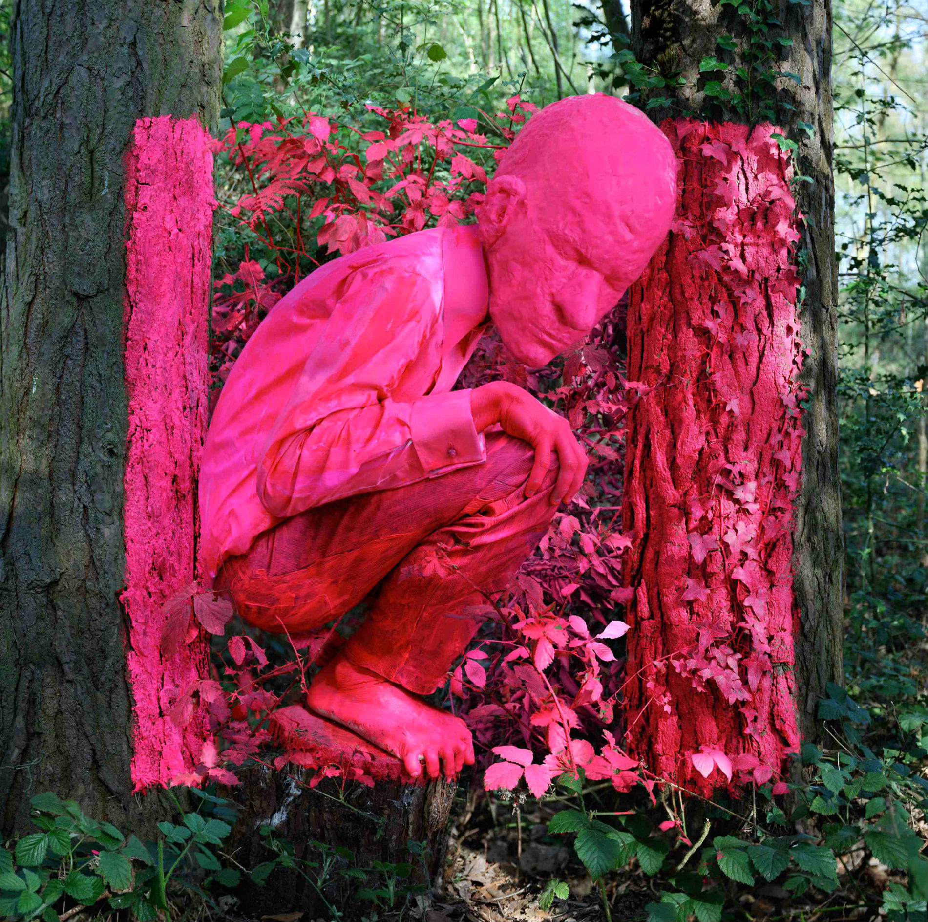 jonny briggs photographer abstract pink figure forest