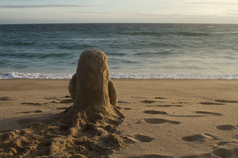 bottle short film animation sand beach sea