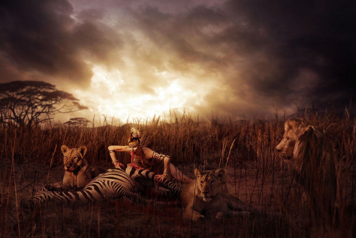 aaron nace photography digital colour surreal zebra meat