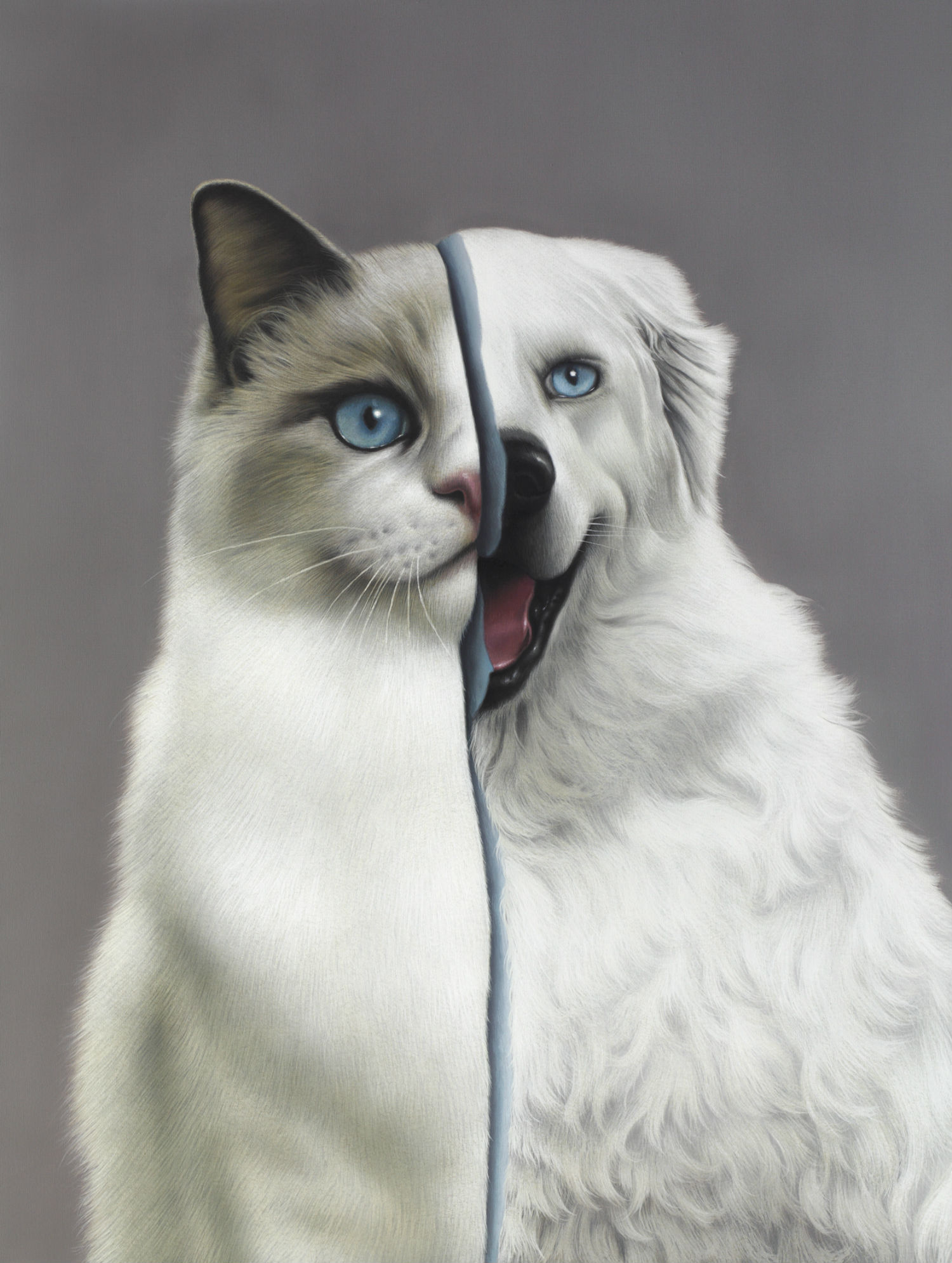 eckart hahn painting hyperrealist colour animal cat dog split
