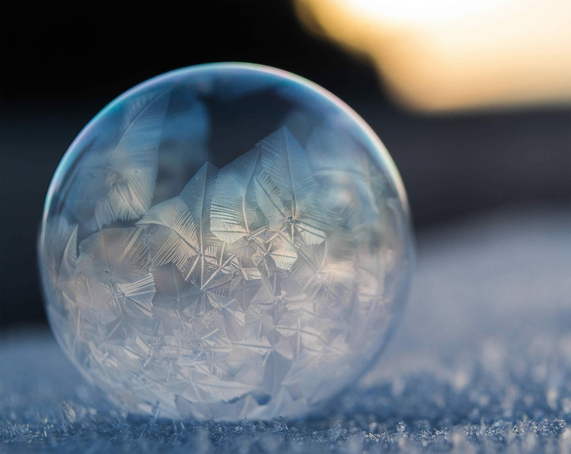 The Art of Freezing Soap Bubbles
