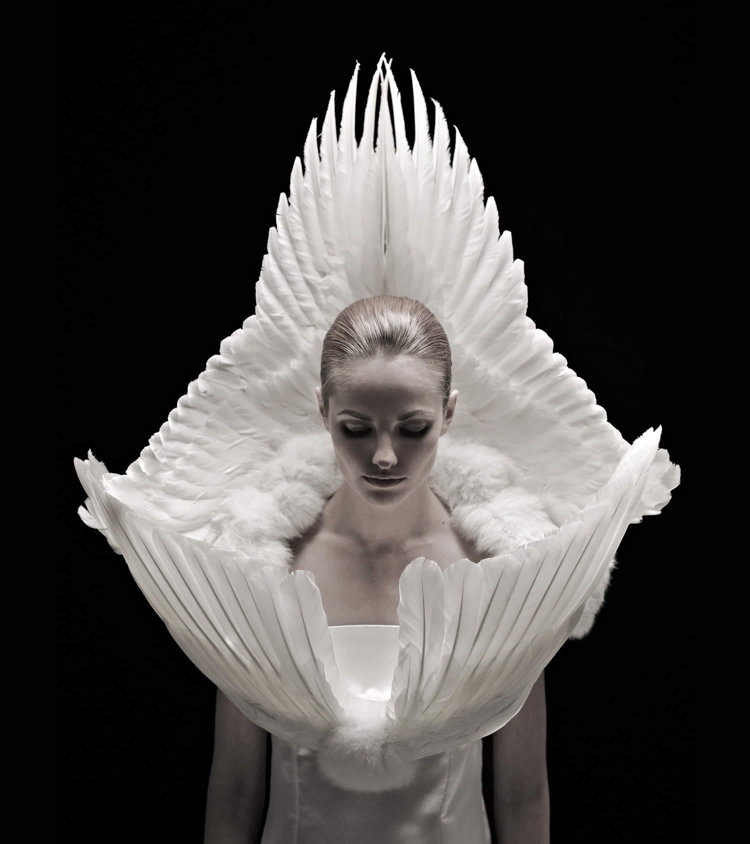 white wings wrapping girl, roadkill couture