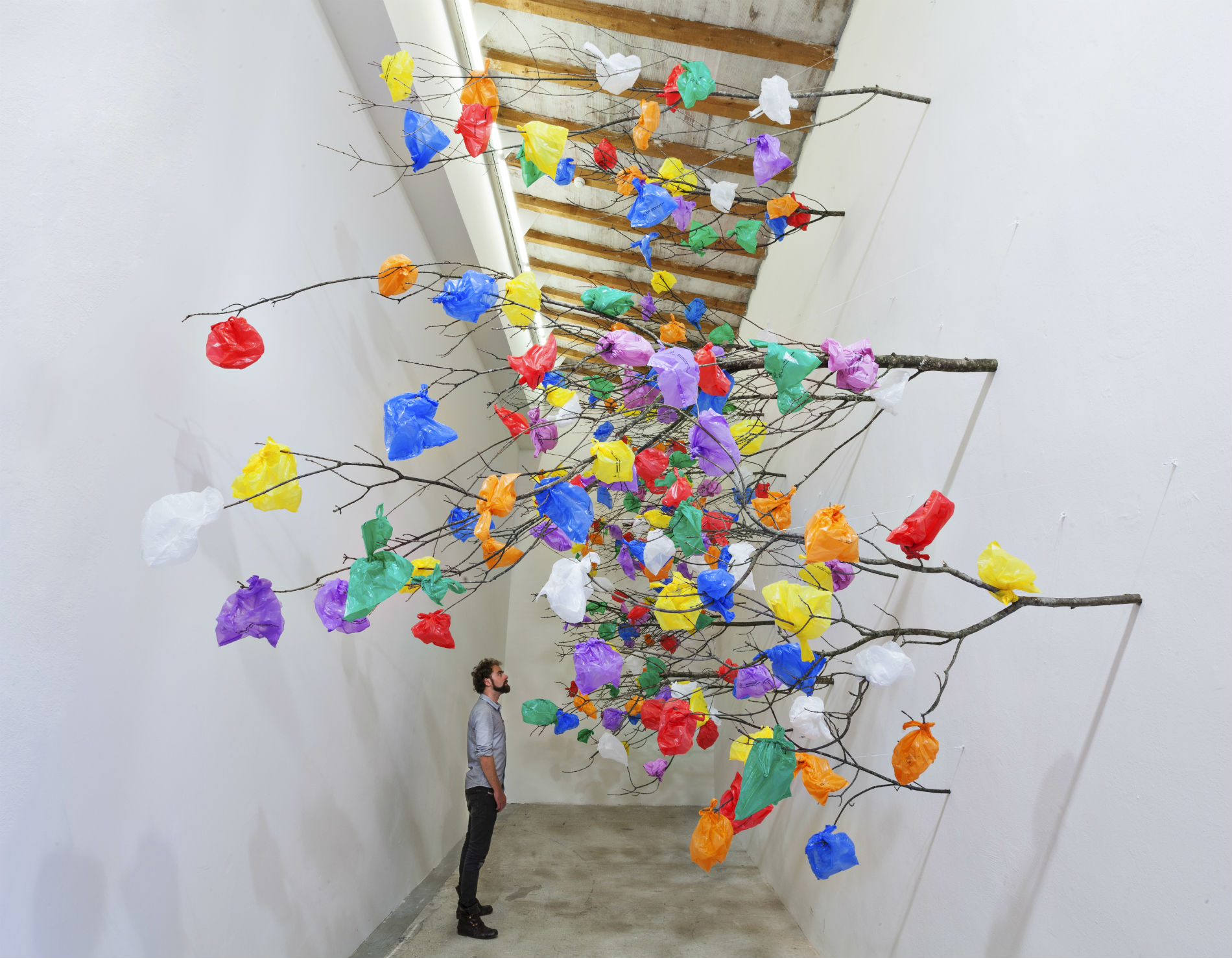 Pascale Marthine Tayou art gallery visual colour tree magic