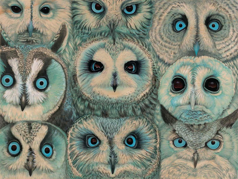 tiffany bozic surreal animals owls