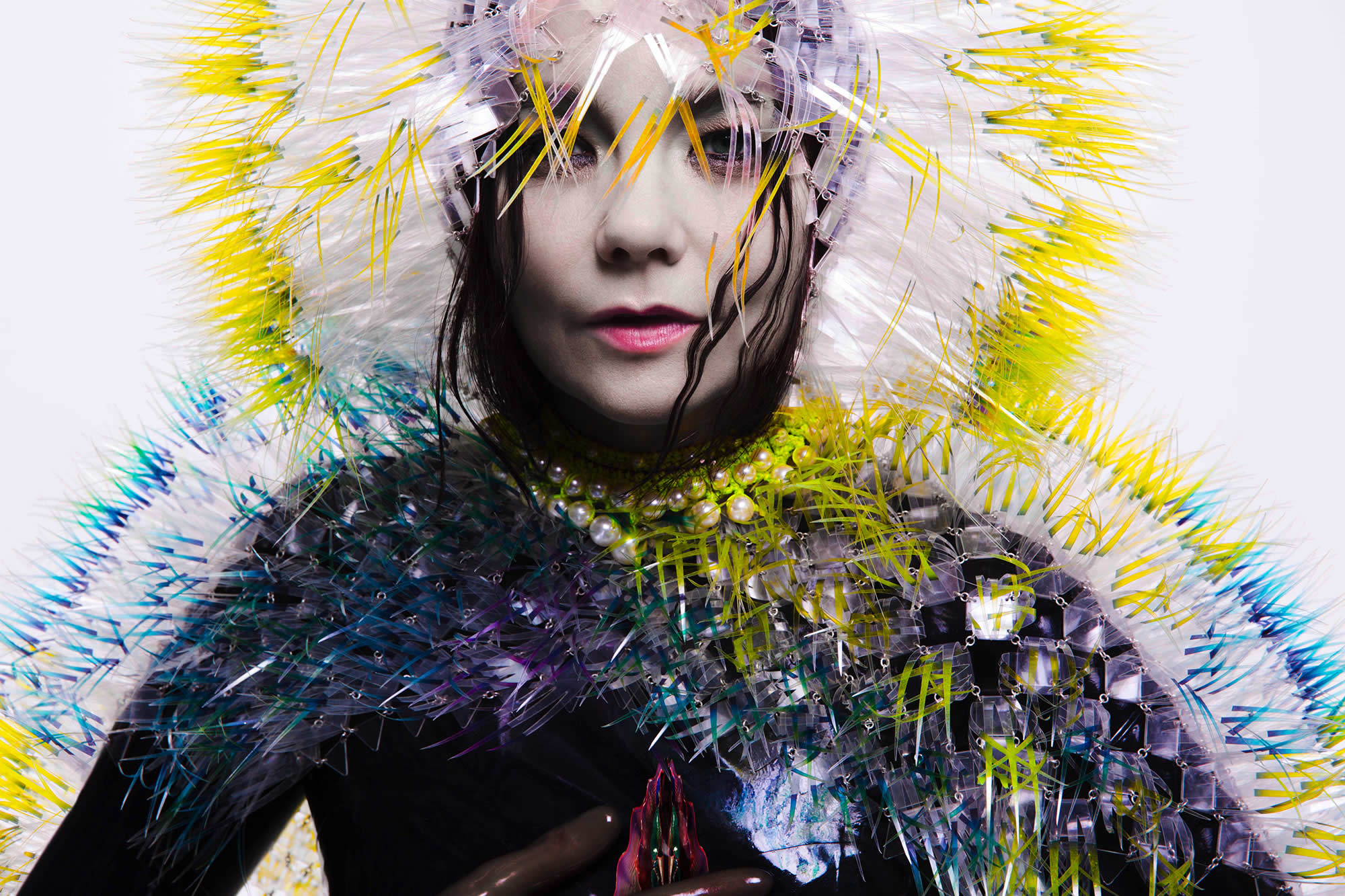 The Science, Art and Nature of Bjork