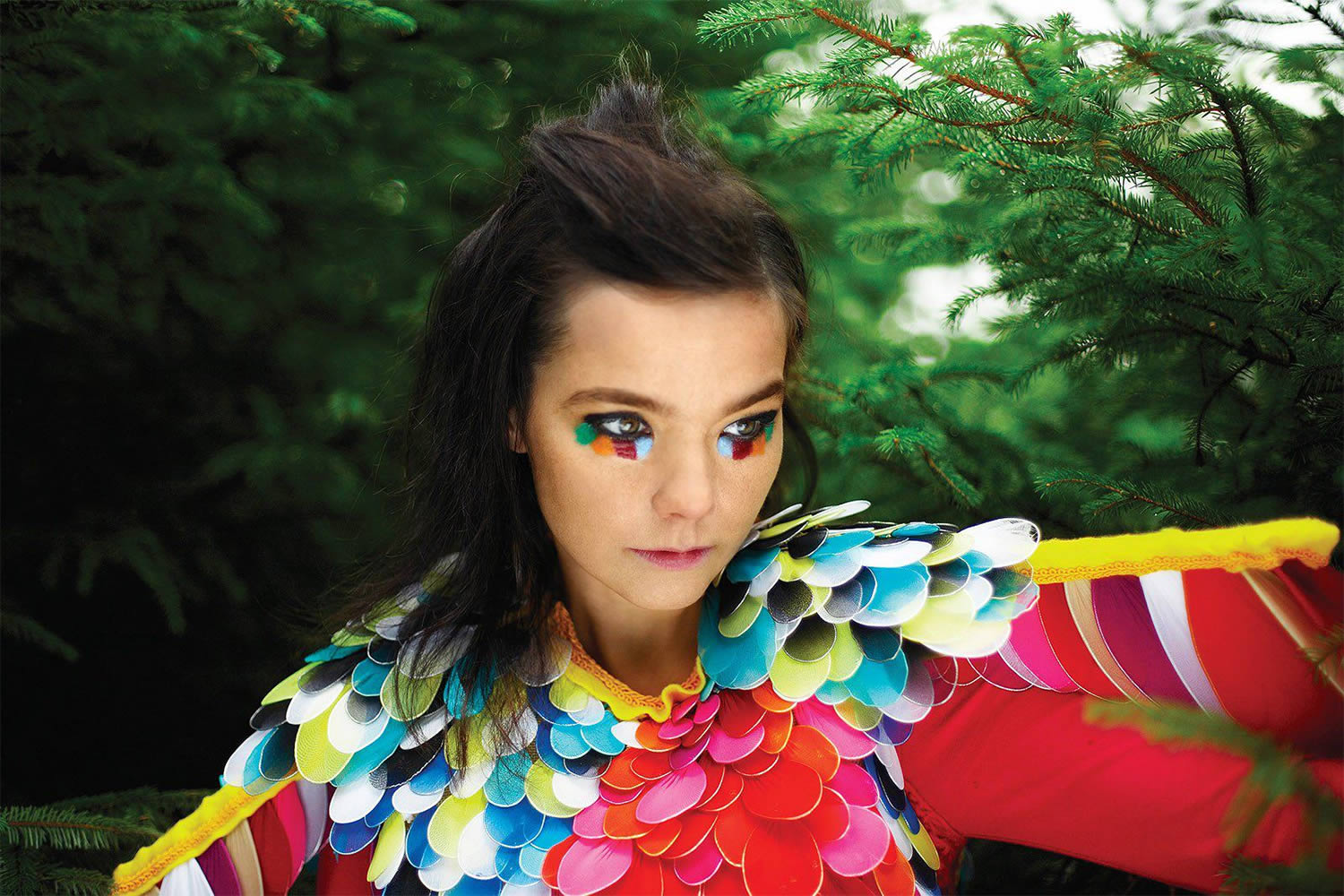 bjork fashion music colour iceland