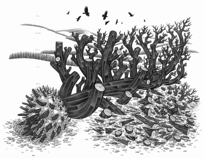 eric beltz drawing black white american mythology shade imagery tree