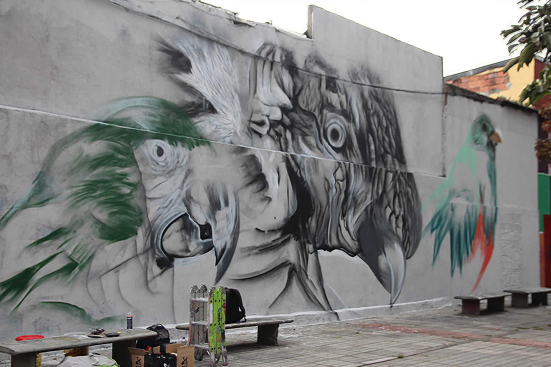parrots, graffiti by mantra rea