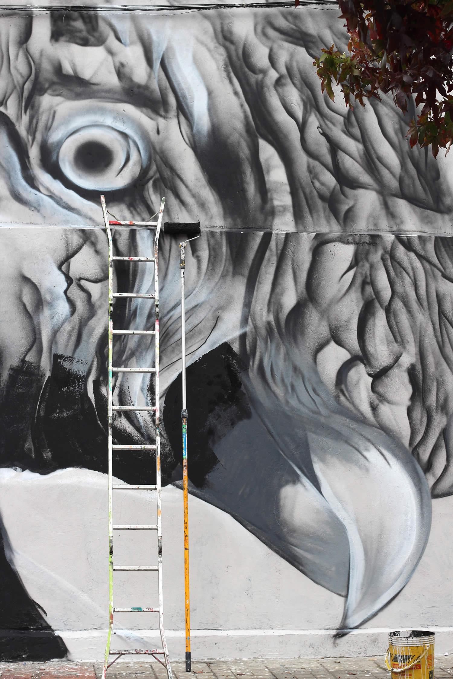 closeup of parrot, graffiti by mantra rea