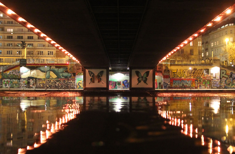 butterflies in frames, graffiti by mantra rea
