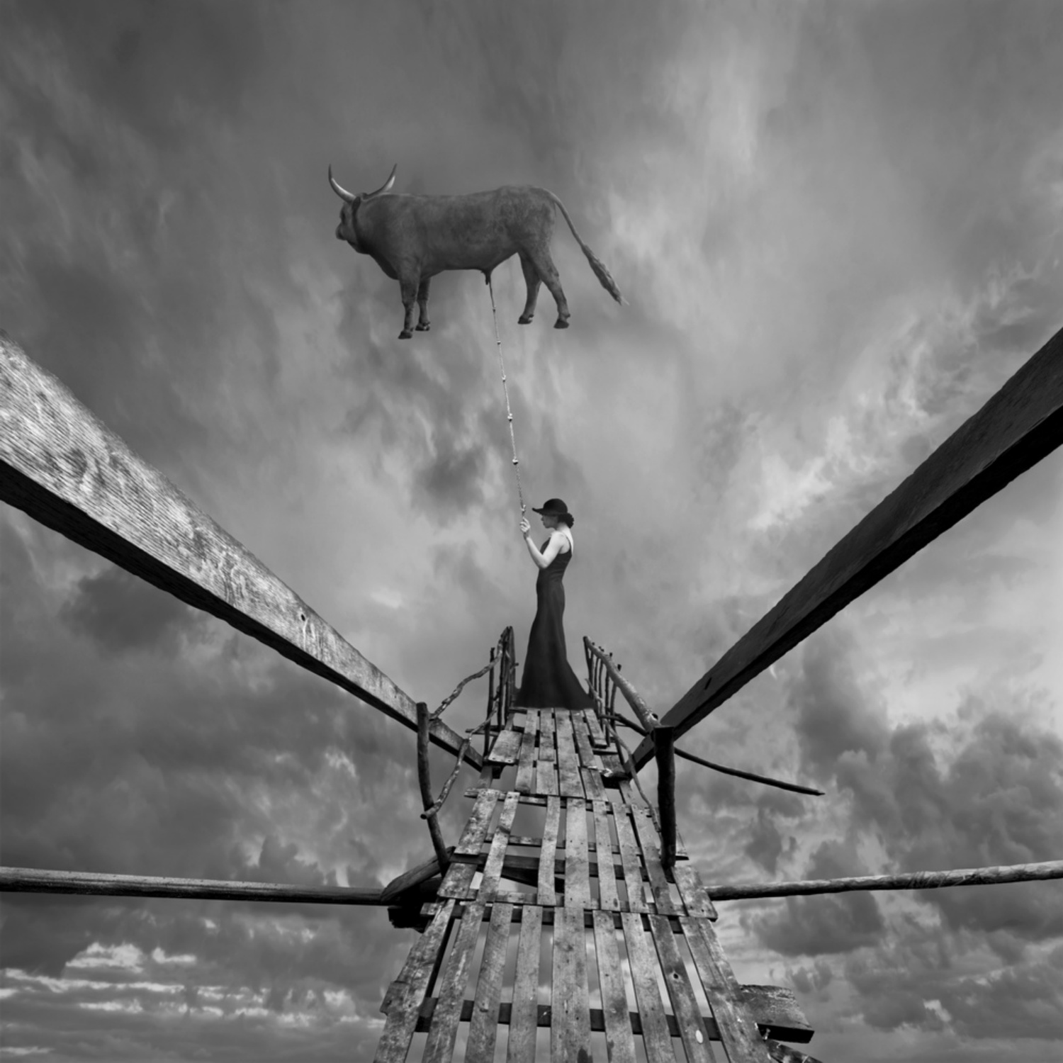 surreal photo manipulations digital black white bull