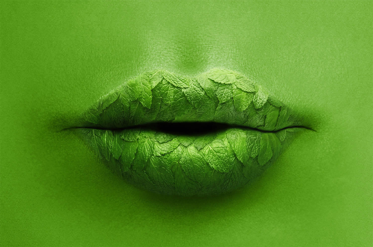 mint lips, Staudinger + Franke, surreal