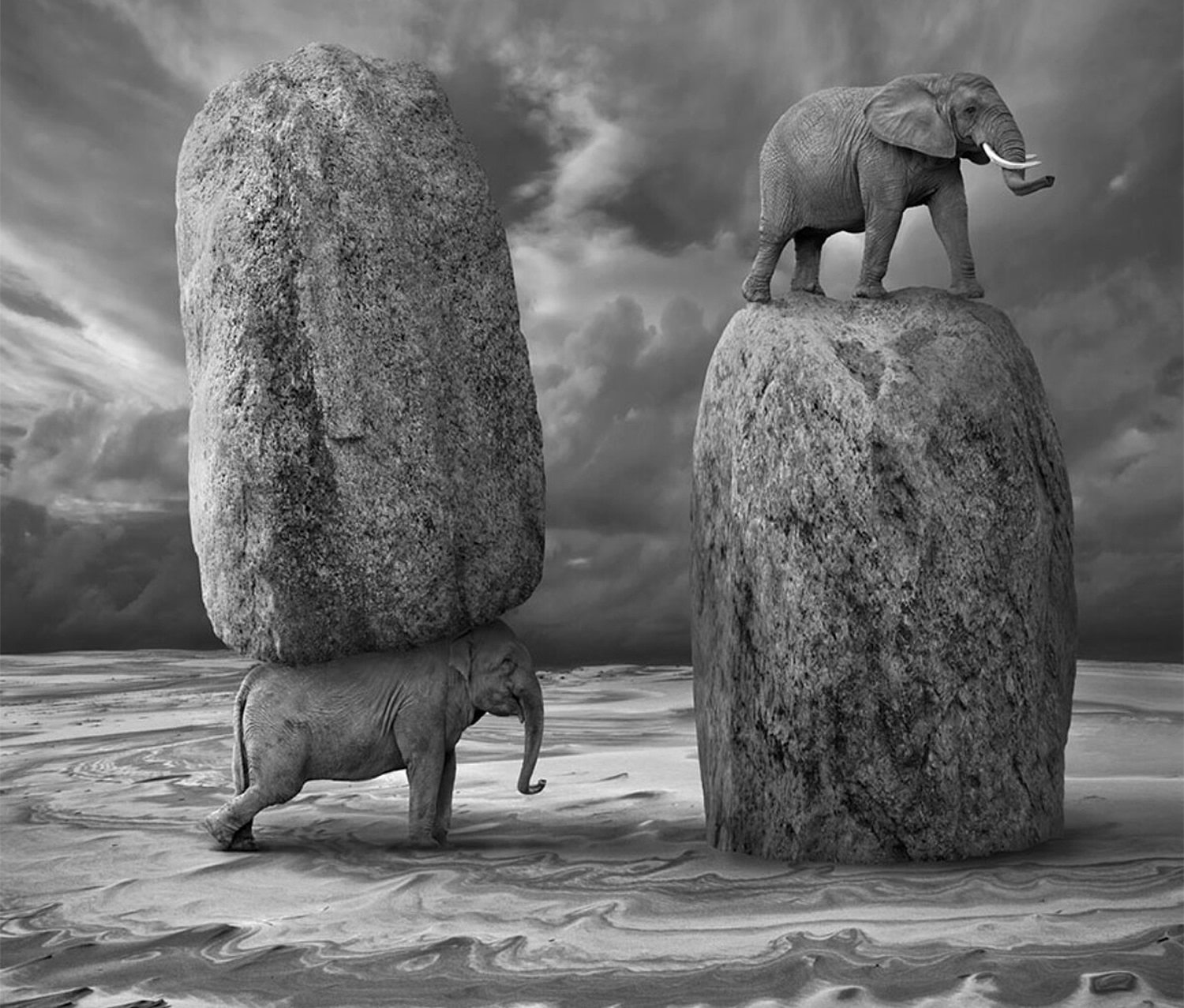 elephants and rocks, surreal photo Dariusz Klimczak