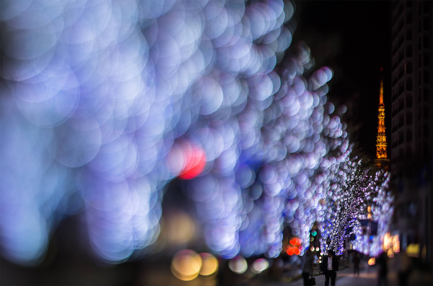 blue bokeh photography, japan, by Takashi Kitajima
