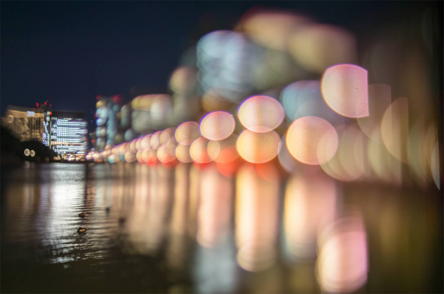 bridge, bokeh photography, japan, by Takashi Kitajima