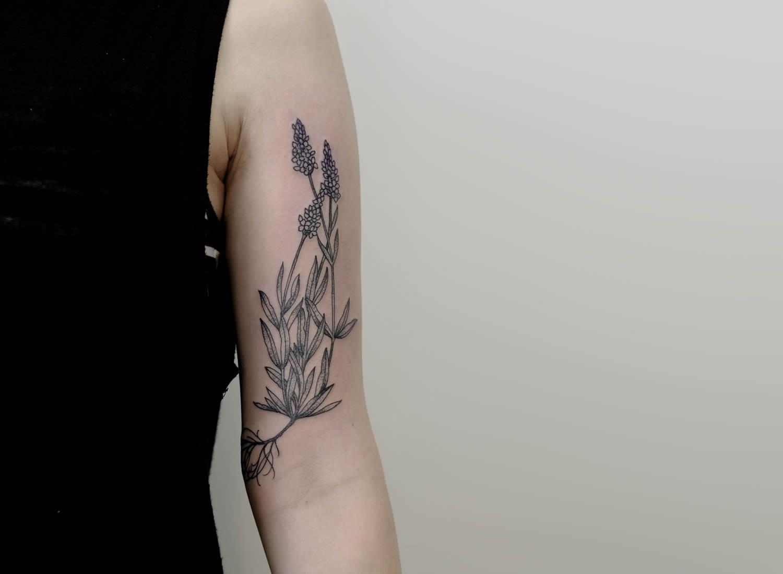 botanical,by victor j webster