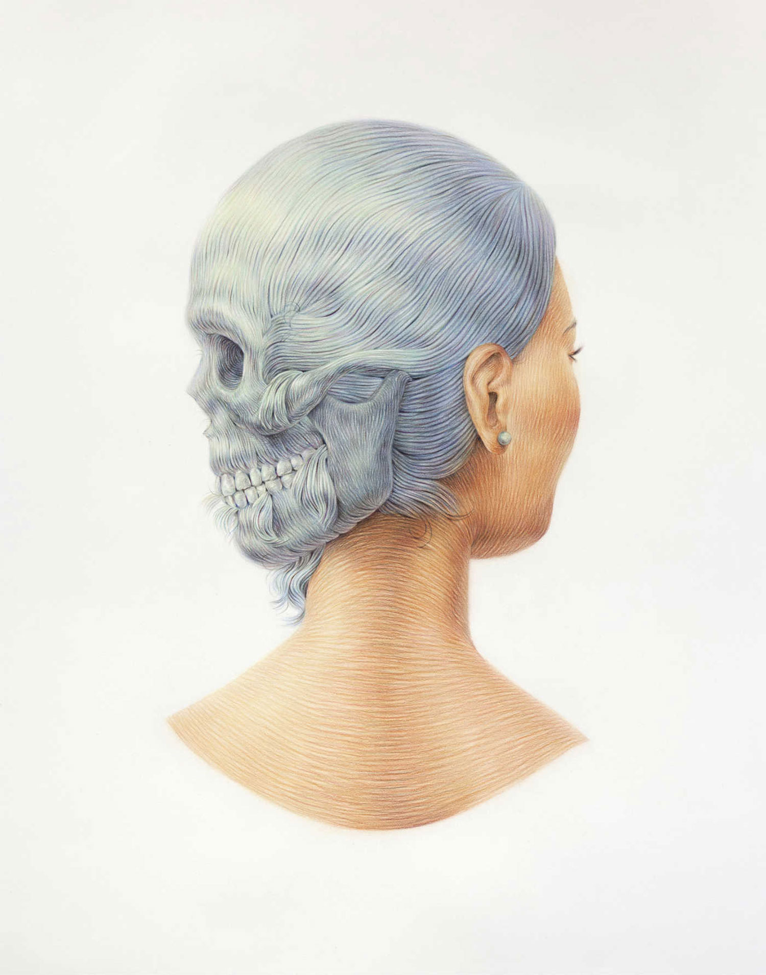 winnie truong moulded hair illustration back and side of head skull