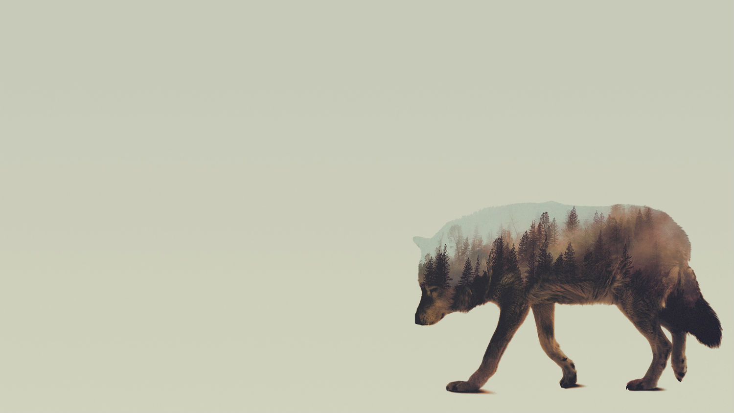 andreas lie double exposure animals wolf