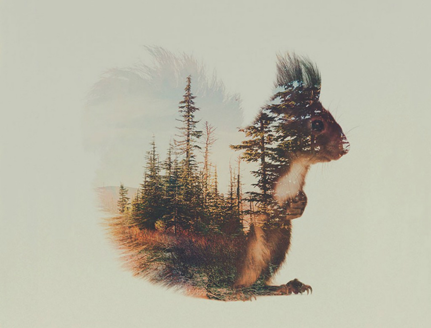 andreas lie double exposure animals squirrel