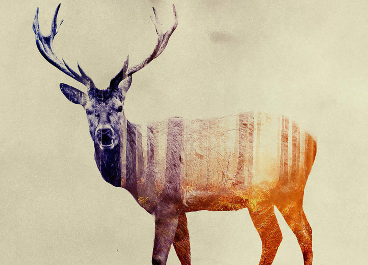andreas lie double exposure animals stag