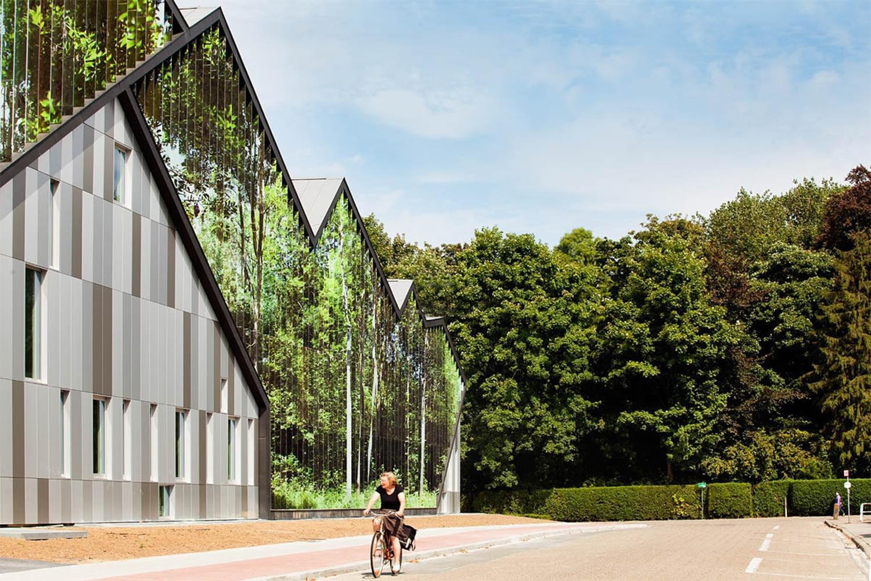 Academie MWD, architectural illusion by carlos arroyo