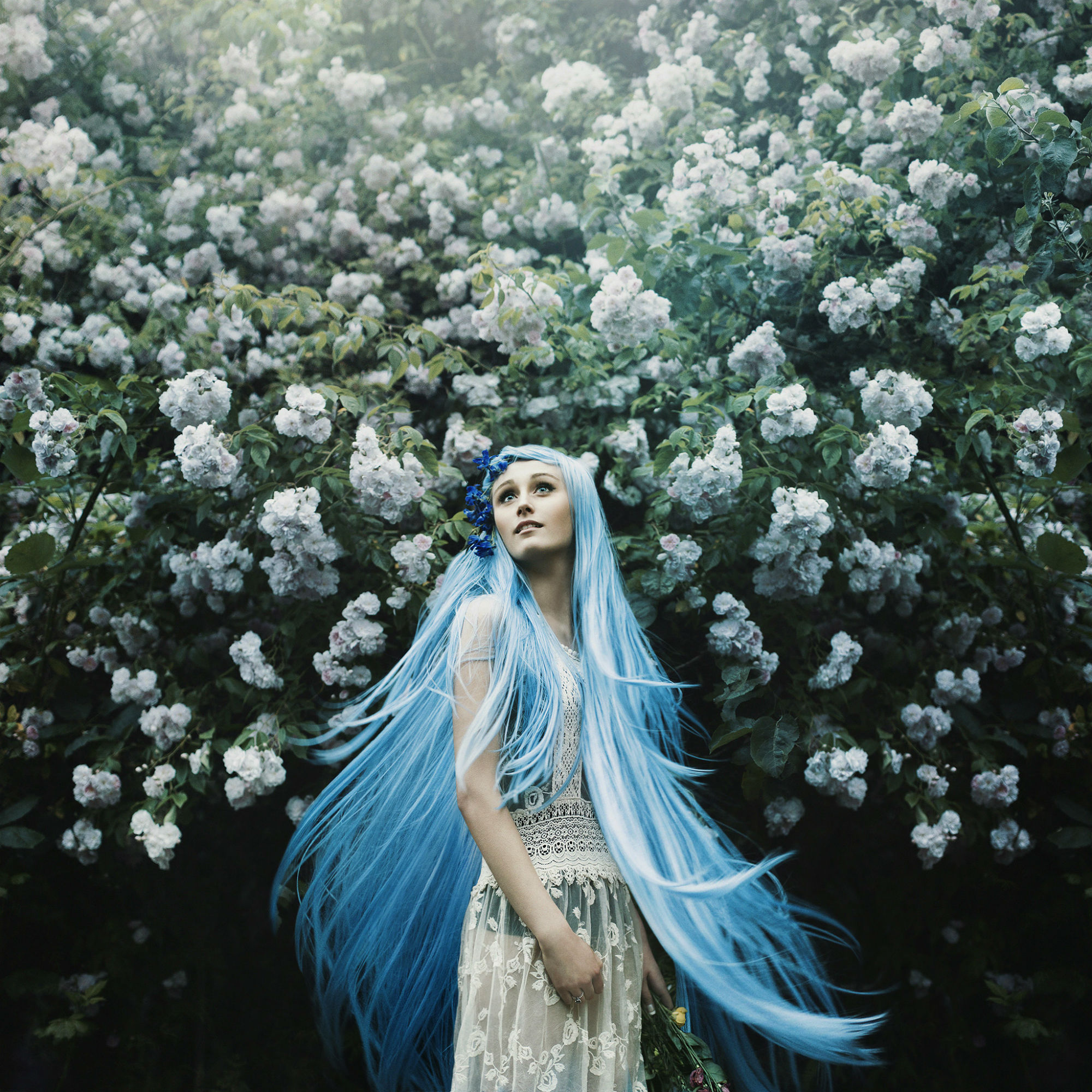 Lost Amongst the Spring Flowers by Bella Kotak