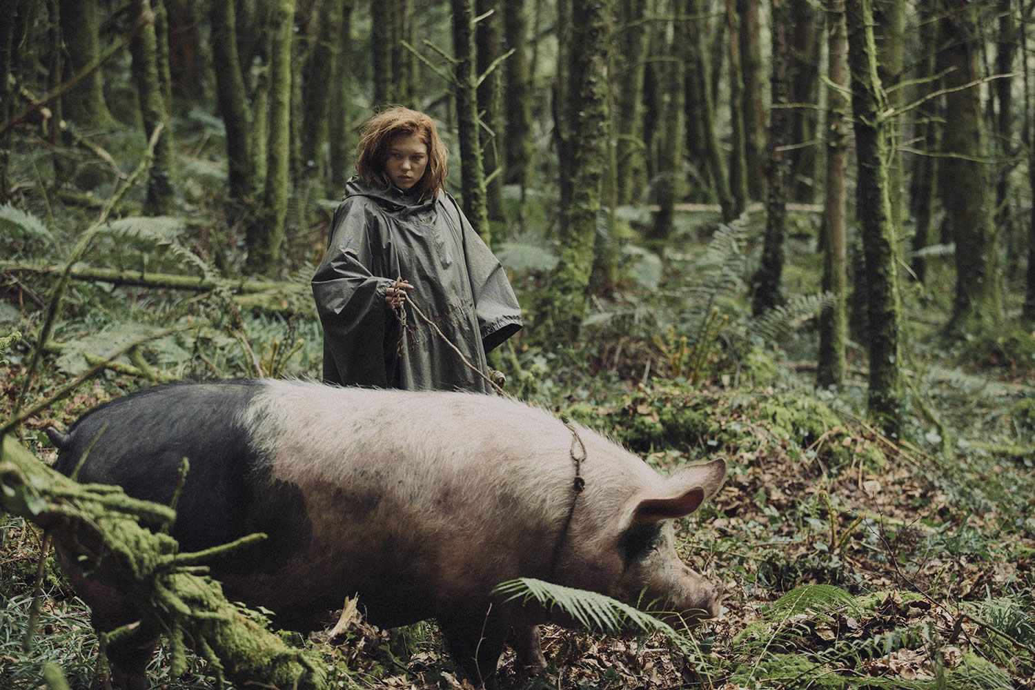 girl with pig in forest, The Lobster movie